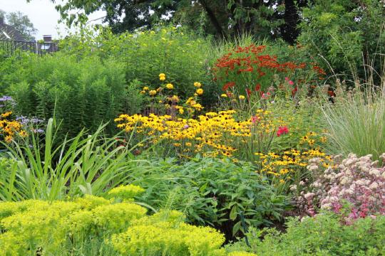 pflanzzeit stauden gardens stk stauden pflanzen. Black Bedroom Furniture Sets. Home Design Ideas