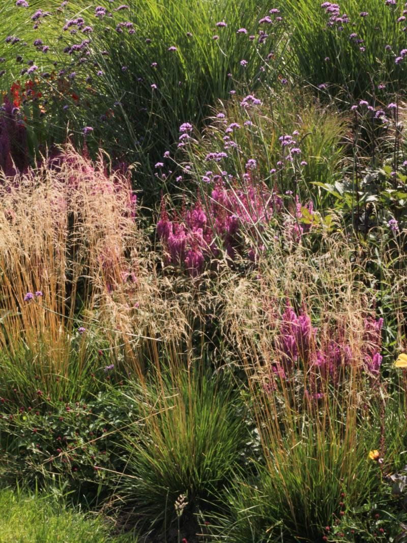 Wunderbar Alternative Zu Rasen Galerie Von Rasen-schmiele